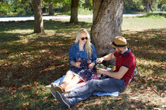 Healthy vegetarian or vegan picnic royalty free stock images