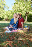 Healthy vegetarian or vegan picnic royalty free stock image