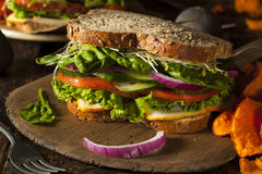 Healthy Vegetarian Veggie Sandwich Royalty Free Stock Image
