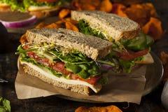 Healthy Vegetarian Veggie Sandwich Royalty Free Stock Photos