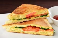 Healthy veggie panini sandwiches Stock Images