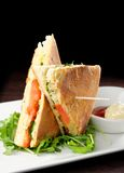 Healthy veggie panini sandwiches Royalty Free Stock Images
