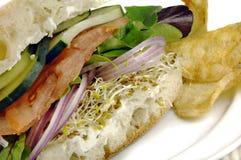 Healthy Veggie Sandwich Royalty Free Stock Photo