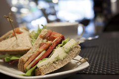 Healthy Veggie Sandwich Royalty Free Stock Image