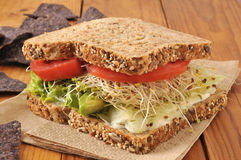 Healthy veggie sandwich Royalty Free Stock Image