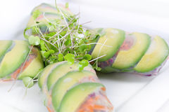 Healthy Veggie Spring Roll Wrapper Stock Image