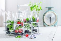Healthy water in bottle with berries Royalty Free Stock Photography