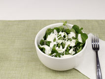 Healthy Watercress and Blue Cheese Salad. One white bowl of watercress salad with blue cheese salad dressing. Lunch of a fresh small leaf watercress salad with stock images