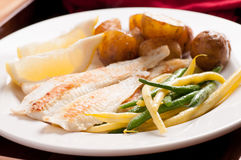 Healthy white fish fillets with vegetables Royalty Free Stock Photography