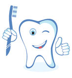 Healthy white shiny tooth Stock Images