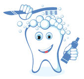 Healthy white shiny tooth. Washes itself Stock Images