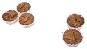 Healthy Whole Wheat Rhubarb Muffins Royalty Free Stock Photos
