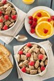 Healthy Whole Wheat Shredded Cereal Stock Image