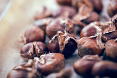 Healthy winter snack chestnuts on wooden background Royalty Free Stock Photo