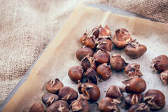 Healthy winter snack chestnuts on wooden background Royalty Free Stock Photography