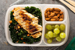 Healthy work or school lunch. With grilled chicken, kale and quinoa Royalty Free Stock Image