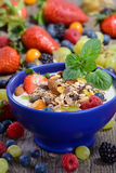 Healthy yogurt. Plain yogurt with muesli and mixed fresh fruit in a blue ceramic bowl Royalty Free Stock Images