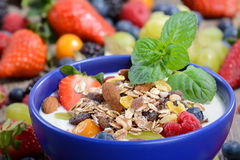 Healthy yogurt. Plain yogurt with muesli and mixed fresh fruit in a blue ceramic bowl Stock Photo