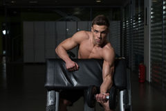 Healthy Young Man Doing Exercise For Biceps Stock Photography