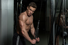 Healthy Young Man Doing Exercise For Triceps Stock Image