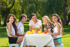 Healthy young teenagers enjoying a summer picnic Stock Photos