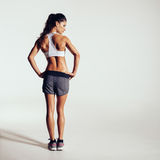Healthy young woman in sportswear royalty free stock image