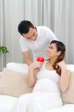 Healty łasowanie kobieta w ciąży Obraz Stock