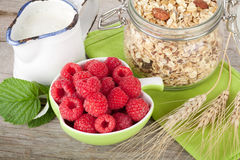 Healty breakfast with muesli, berries and milk Royalty Free Stock Images