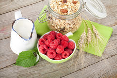Healty breakfast with muesli, berries and milk Stock Images