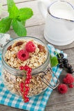 Healty breakfast with muesli, berries and milk Stock Photos