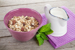 Healty breakfast with muesli and milk Stock Photography