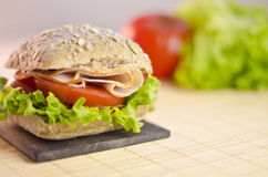 Healty chicken sandwich Royalty Free Stock Photo