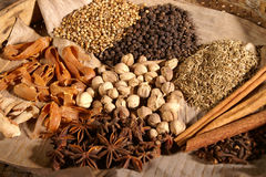 Healty herbs. Herbs for healthy food ingredients Royalty Free Stock Images