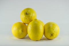 Healty organisches natürliches Gelb der frischen Frucht der Zitrone Stockfoto