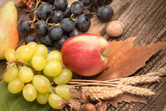 Healtydieet & x28; food& x29; - Vers organisch seizoengebonden de herfstfruit stock foto's
