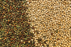 Heap of agricultural crop seed as background Stock Images