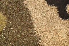 Heap of agricultural crop seed as background Royalty Free Stock Photo