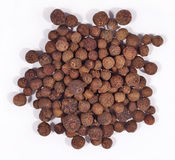 Heap of allspice on a white. Background stock images