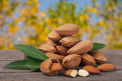 Heap of almonds in their skins and peeled with leaf isolated on white background Royalty Free Stock Photo