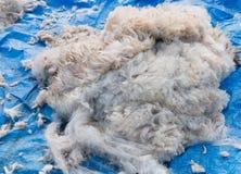 Heap of alpaca fiber Royalty Free Stock Images