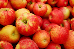 Heap of Apples Royalty Free Stock Image