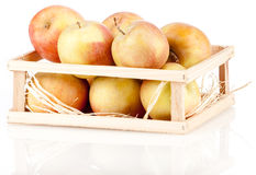 Heap of apples Royalty Free Stock Photography