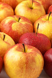 Heap of apples Stock Image