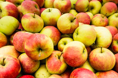 Heap of apples from close Royalty Free Stock Photo