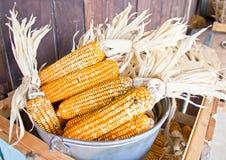 Heap of artificial corns. Stock Photos