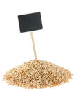 Heap of barley  with a pointer for your text Royalty Free Stock Photography