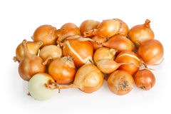 Heap of beautiful onions Royalty Free Stock Photos