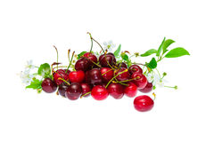 Heap  berries of a cherry Royalty Free Stock Photo