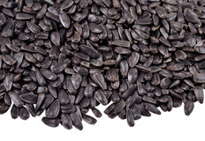 Heap of  black sunflower seeds on a white Stock Photo