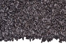 Heap of  black sunflower seeds on a white Stock Image